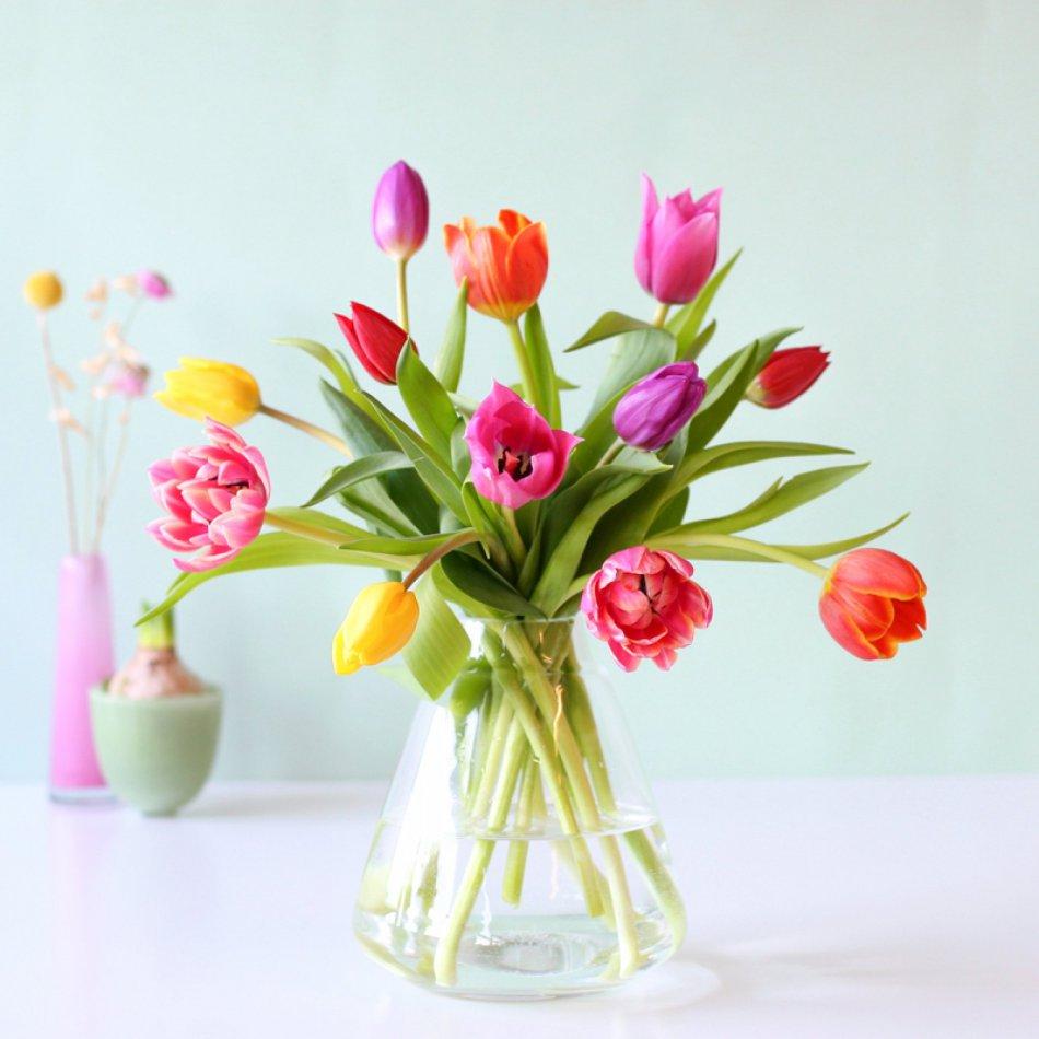 Tulpenmix